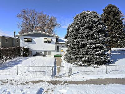 Billings Single Family Home For Sale: 102 S Santa Fe Drive
