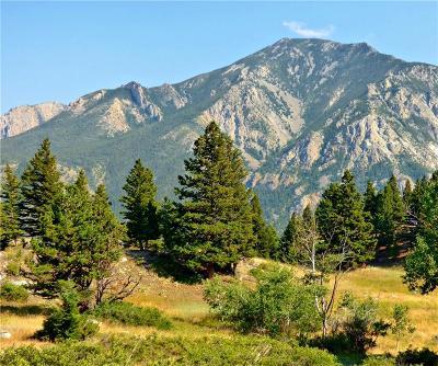Nye Residential Lots & Land For Sale: Lot 12 Elk Park Trail