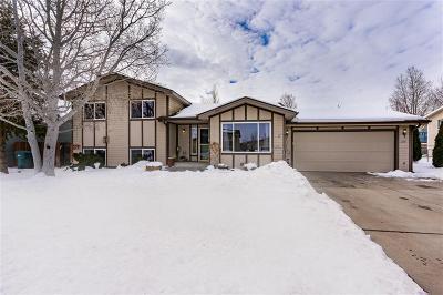 Yellowstone County Single Family Home For Sale: 1234 Caroline Street