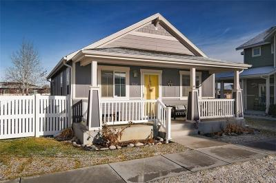 Billings Single Family Home For Sale: 5341 Golden Hollow