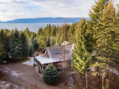Single Family Home For Sale: 32009 Birch Tree Drive, Bigfork
