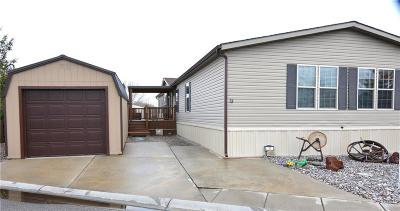 Billings Single Family Home For Sale: 23 Mountain Side Drive