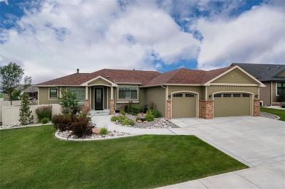 Billings Single Family Home For Sale: 2236 Stone Creek Trl