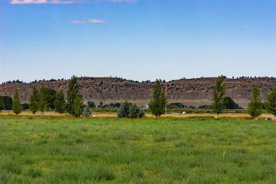 Park City Residential Lots & Land For Sale: Lot 11b Sagebrush Downs