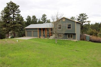 Single Family Home For Sale: 4618 Cave Rd