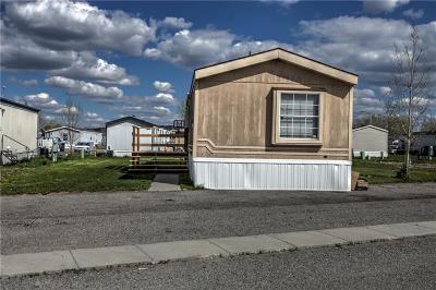 Billings Single Family Home For Sale: 17 Attika Street N