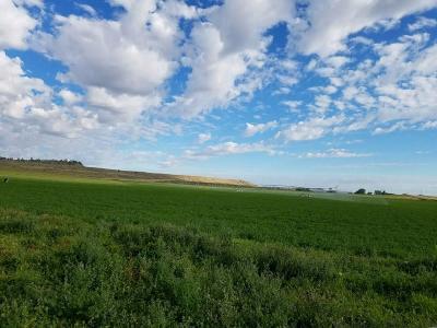 Joliet Farm & Ranch For Sale: 298 Poverty Flat