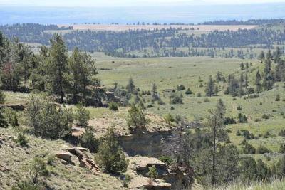 Billings Residential Lots & Land For Sale: 390 Acres Highway 302