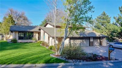Billings Single Family Home For Sale: 4239 Town Lane