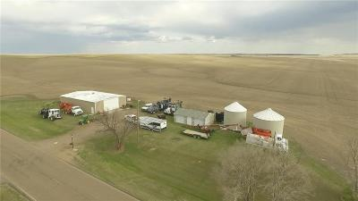 Single Family Home For Sale: 2018 Road 2052 (S. Side Of Road) Froid, Mt
