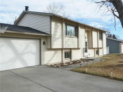 Billings Single Family Home For Sale: 1167 Patriot