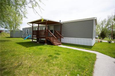 Single Family Home For Sale: 509 Kallen Drive