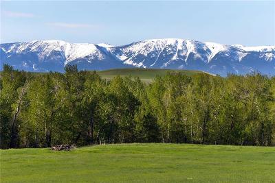 Absarokee Residential Lots & Land Contingency: 122 Acres Aspen Meadows/Hwy 78