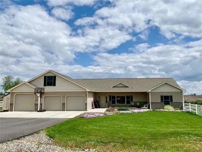 Billings Single Family Home For Sale: 539 Zebra Street