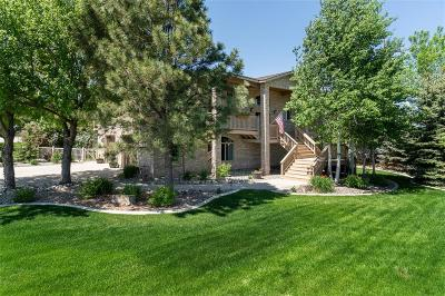 Single Family Home Contingency: 3441 Masterson Circle
