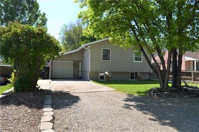 Billings Single Family Home For Sale: 2514 Copper Boulevard