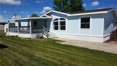 Billings Single Family Home For Sale: 3907 Swallow Lane