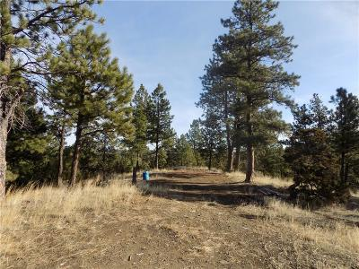 Columbus, Reed Point Residential Lots & Land Contingency: Lot # 83 Haystack Coulee Road
