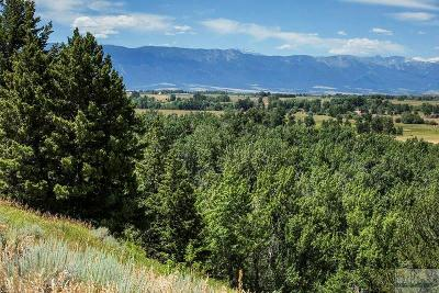 Red Lodge Residential Lots & Land For Sale: Nsn Clear Creek & Rosebud View