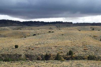 Billings Residential Lots & Land For Sale: 3404 Sagehill Road
