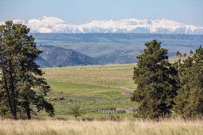 Park City Residential Lots & Land For Sale: 200 Valley Creek