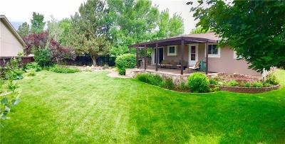Billings Single Family Home For Sale: 990 Constitution Avenue