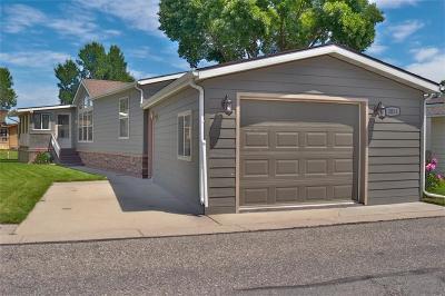 Billings Single Family Home For Sale: 3851 Sandpiper Lane