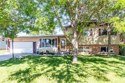 Billings Single Family Home For Sale: 419 Mervin Street