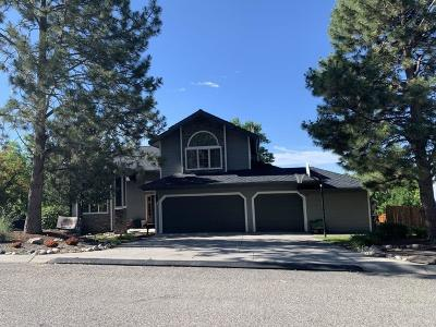 Billings Single Family Home For Sale: 4382 Laredo Place