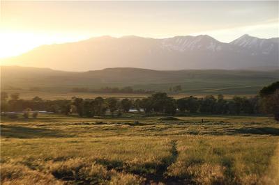 Big Timber Farm & Ranch For Sale: Tbd Hwy 10 W Parcel A