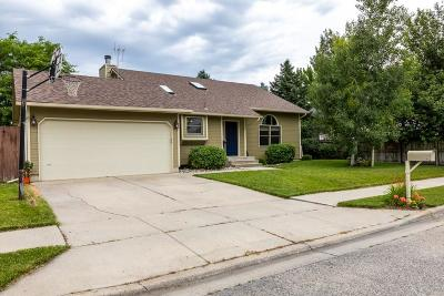 Billings Single Family Home For Sale: 3731 Mount Rushmore Avenue