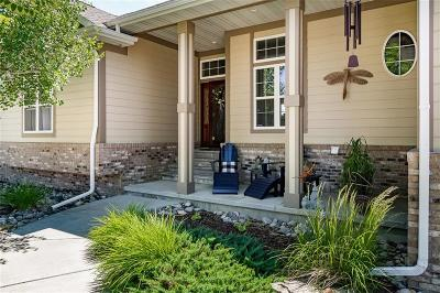 Billings Single Family Home For Sale: 6084 Ironwood Dr