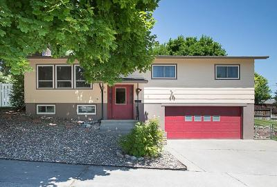 Single Family Home For Sale: 1315 Cook Avenue