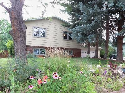Billings Single Family Home For Sale: 1328 Valley Forge Street