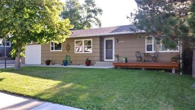 Billings Single Family Home For Sale: 2733 Beth Drive