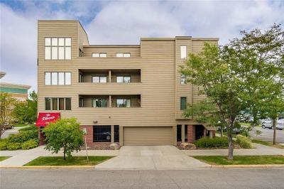 Condo/Townhouse For Sale: 703 N 29th St #204