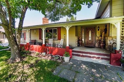 Worden Single Family Home For Sale: 1509 Clark Avenue