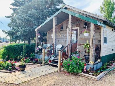 Single Family Home For Sale: 222 E Northern Avenue