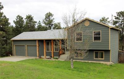 Single Family Home For Sale: 4618 Cave