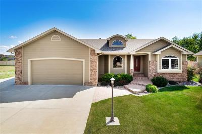 Billings Single Family Home For Sale: 4136 Ashford