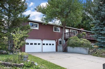 Billings Single Family Home For Sale: 110 Crestline Drive
