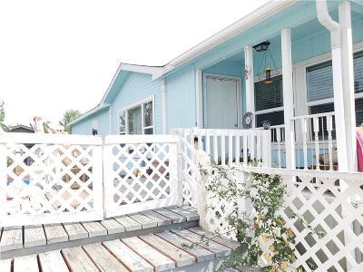 Billings Single Family Home For Sale: 3 Hartland St N