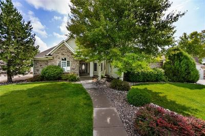 Billings Single Family Home For Sale: 1745 Forest Park Drive