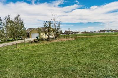 Single Family Home For Sale: 6425 Hofferber Road
