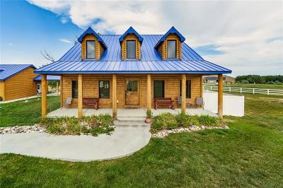 Single Family Home For Sale: 7925 Eagle Bend Boulevard