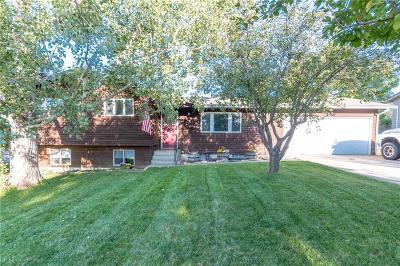 Billings Single Family Home For Sale: 715 Shamrock Ln