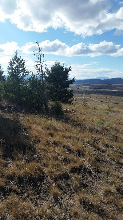 Residential Lots & Land ACTIVE: Mc Mining Claim