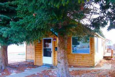Anaconda Single Family Home For Sale: 113 N Locust St