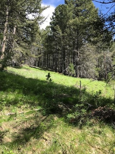 Residential Lots & Land UNDER CONTRACT-TAKE BKUPS: Blacktail Canyon Road