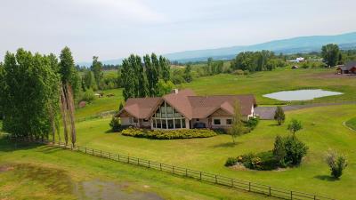 Victor Single Family Home For Sale: 466 Bella Vista Way